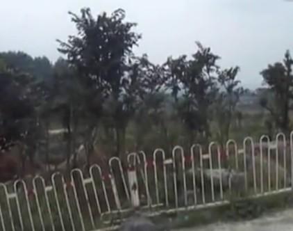 苗岭园艺场,金沙园林绿化